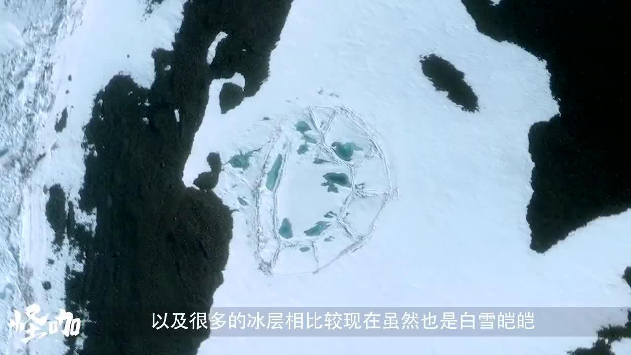 100多年前的相机胶卷现身南极大陆冲洗底片后引人深思