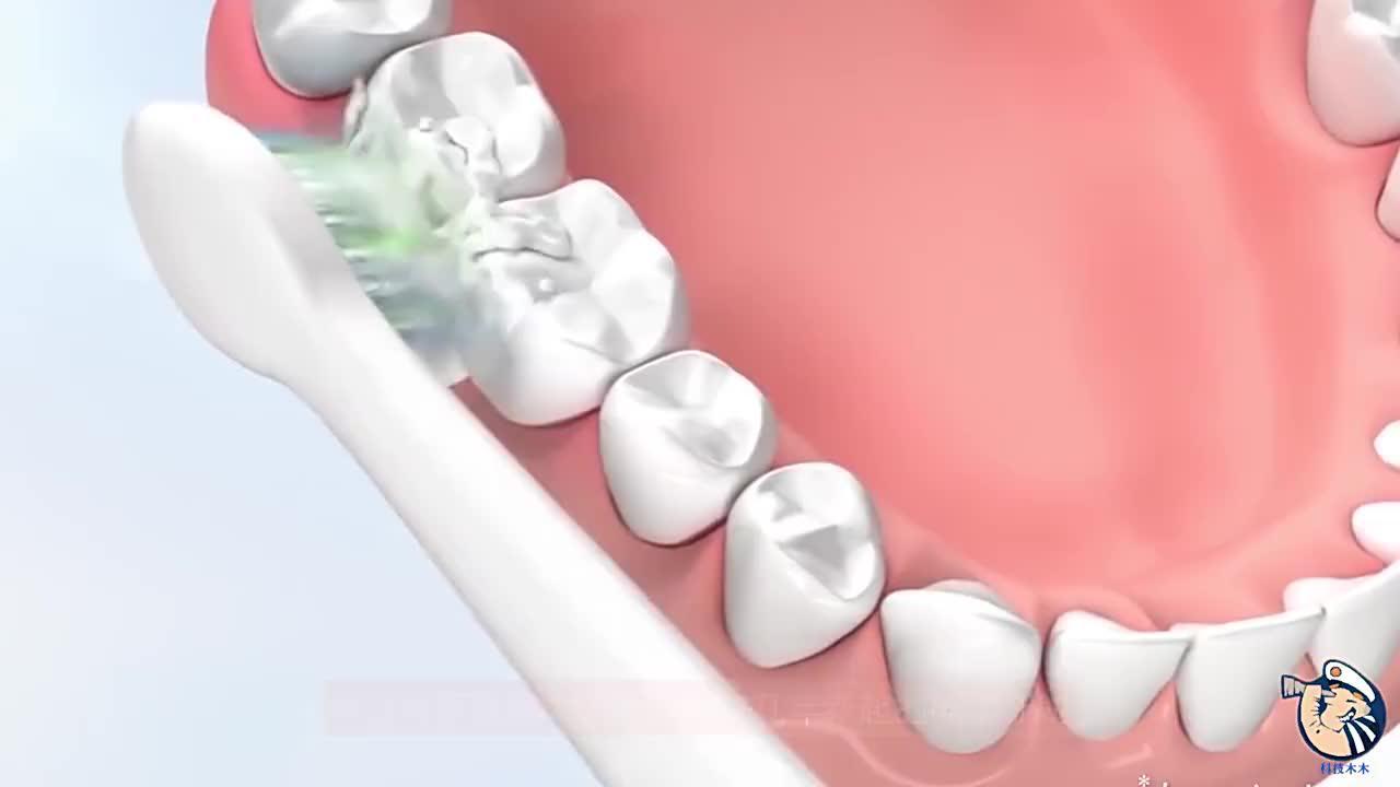 电动牙刷到底靠不靠谱看完3D动画模拟画面长见识了