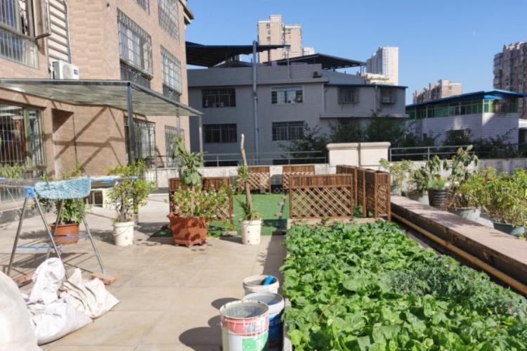 不顾反对买二楼房子,赠送300㎡超大露台,可以种花种菜跳广场舞
