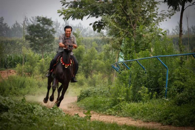 夏县南大里乡将举办第二届乡村文化旅游系列活动