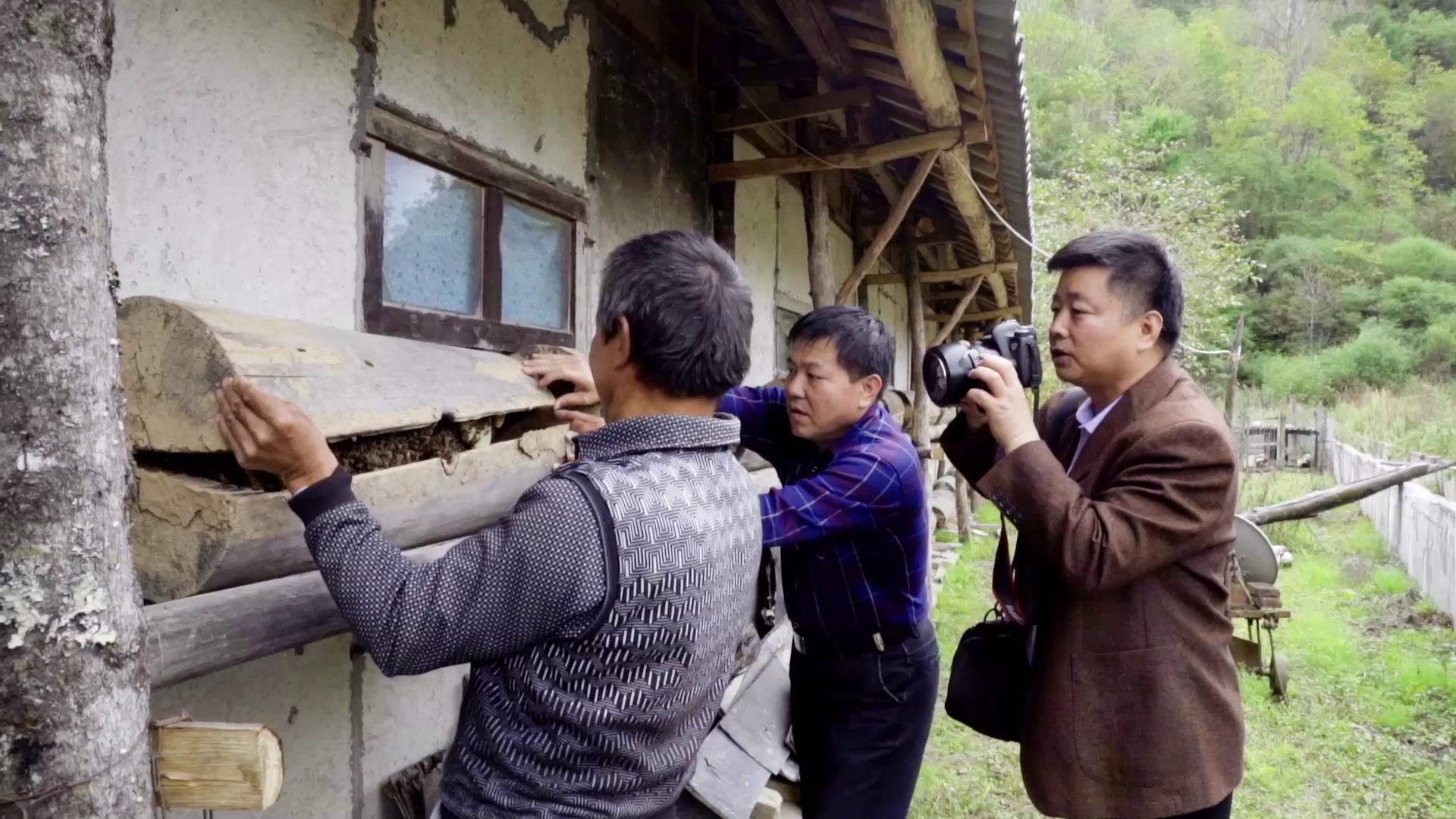 """下地、卖猪、送药……雁塔扶贫干部成了周至老县城的""""快递员"""""""