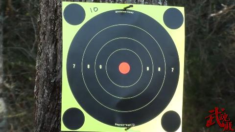小口径步枪霰弹,这样的子弹就是玩的吧 威力都不够自卫