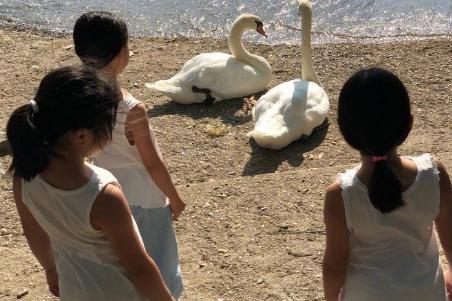 黎姿带女儿到农庄体验生活,三个女儿打扮接地气与动物互动超有爱