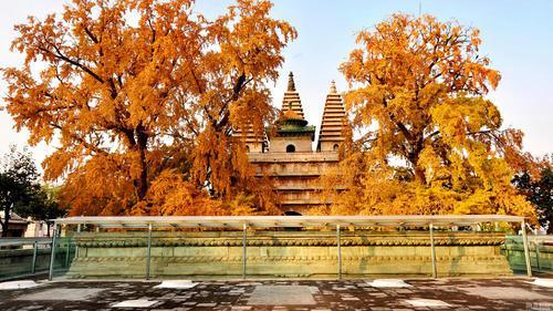 北京古老的五塔寺,石刻文化的荟萃地,雕塑建筑精美具有艺术性