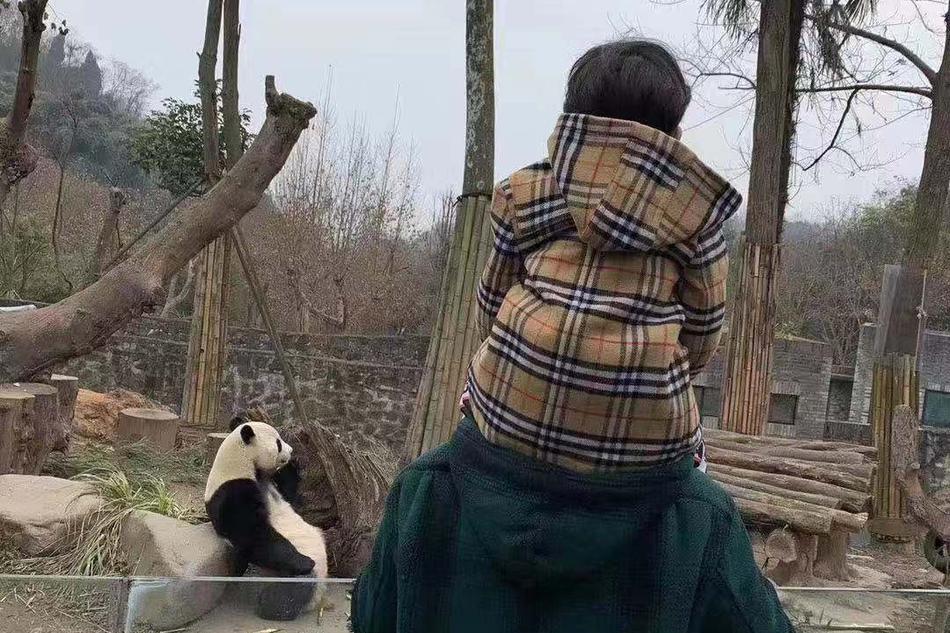 黄晓明转发baby微博为儿子庆生:做你永远的奥特曼
