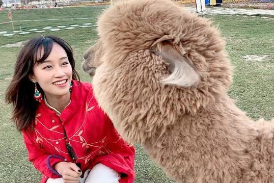 杨紫李一桐蓝盈莹新戏,将和3位大叔上演父女恋,哪对最有CP感?