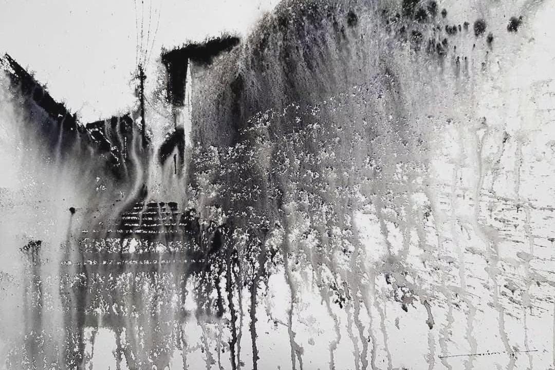 秘鲁艺术家 尼古拉斯·洛佩斯的个性化水彩