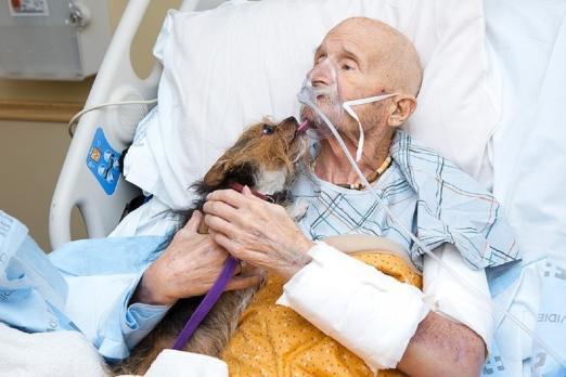 暖哭!美69岁退伍军人自知所剩时间不多,临终前如愿与爱犬道别