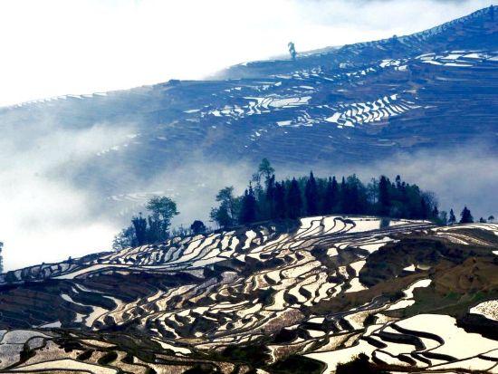 坝达景区又叫麻栗寨景区,位于县城南部43公里,是具有特色的经典