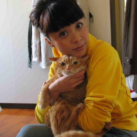 杨若兮的猫,张雨绮的猫,张惠妹的狗狗们,都没她的宠物冷血!