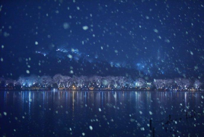 西湖千树玉交加,清夜掀蓬看雪花