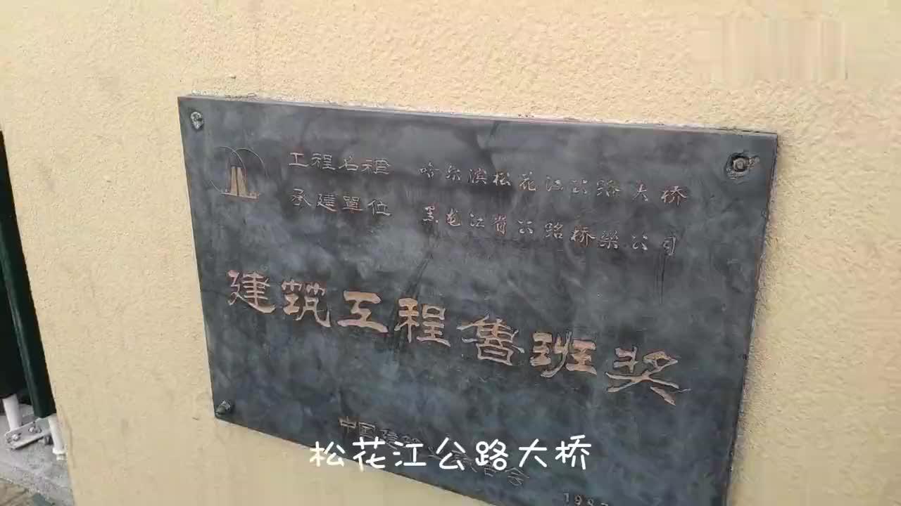 哈尔滨暴走徒步会展中心到科技创新城四公路大桥太阳岛