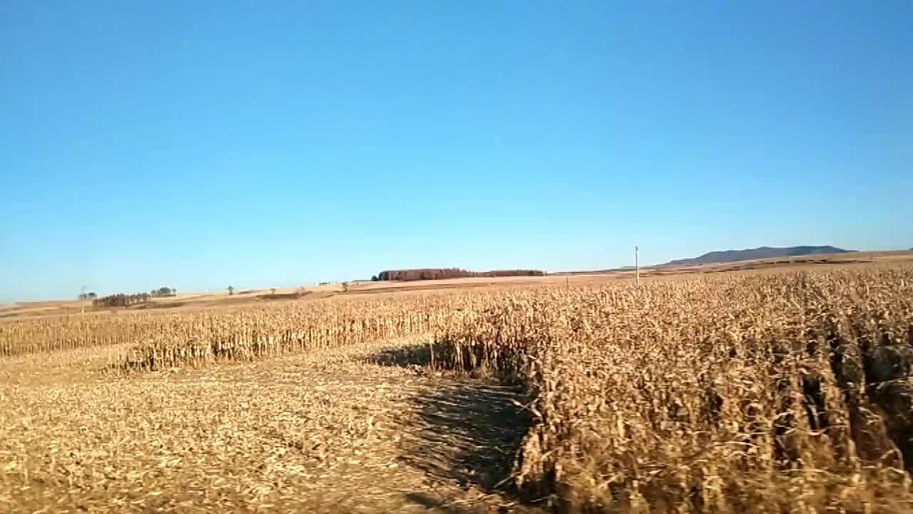吉林头条蛟河市新农街秋天的田野