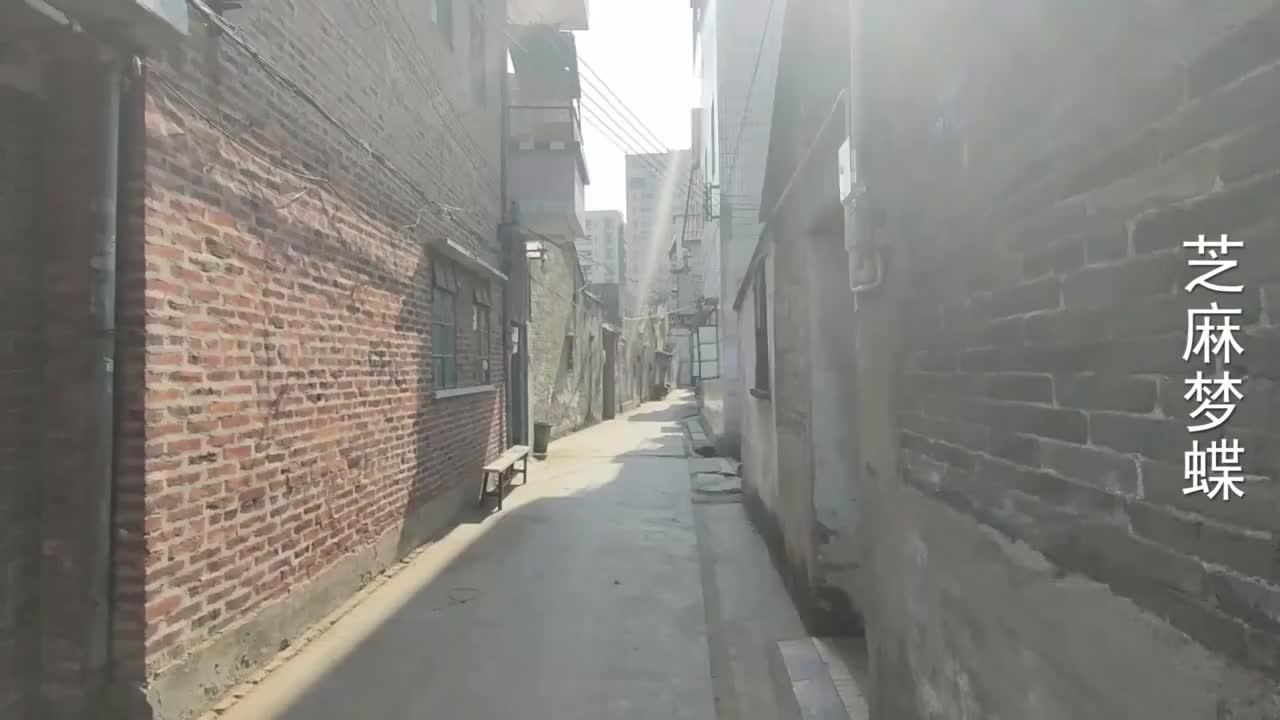 东莞长安沙头小巷子实拍白天格外安静和乌沙十三巷有得一比