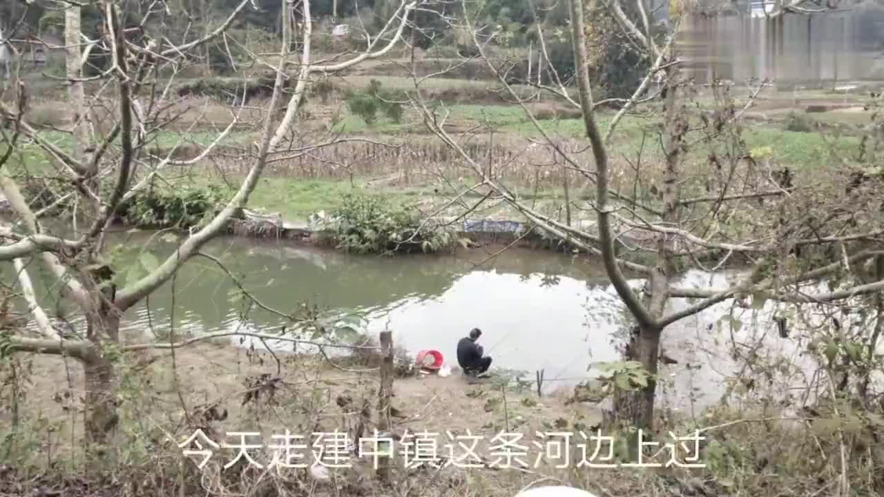 四川省绵阳市三台县这个农村小河好多人野钓不知道效果如何