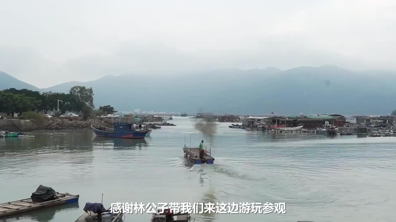 广东潮汕的海上威尼斯1000渔排养海鱼盛产赤嘴鳘石斑鱼