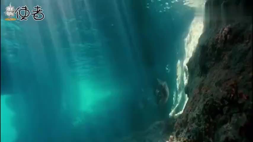 深海10000米究竟有多么恐怖去过那里的人比登月还少