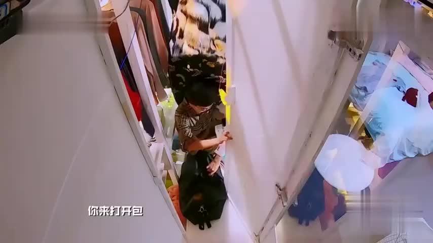 综艺撒贝宁探次案少奋斗几十年小黑包藏干货惊到杨蓉