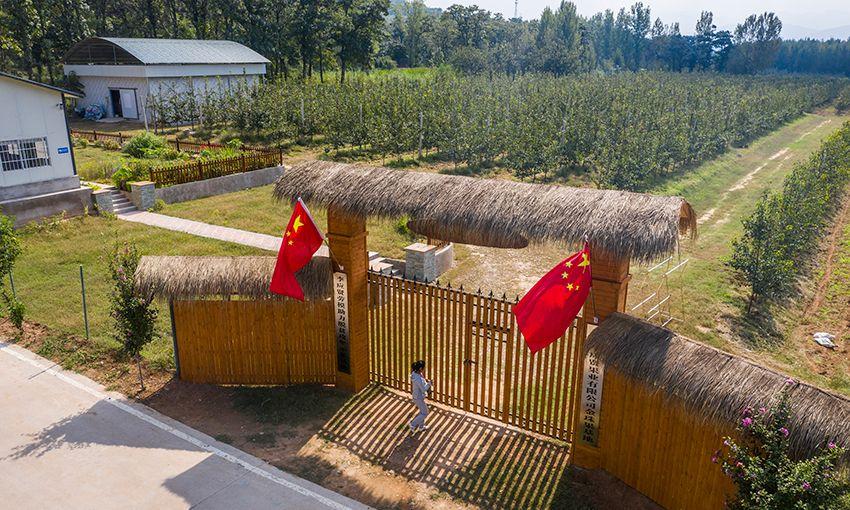 上海交大土味招生视频爆红,满屏皆是蓝翔技校的影子,官微回应