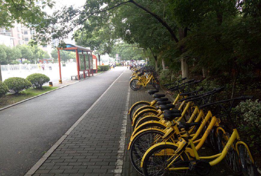 为什么有哈罗单车的城市摩拜和ofo就会被人们遗忘