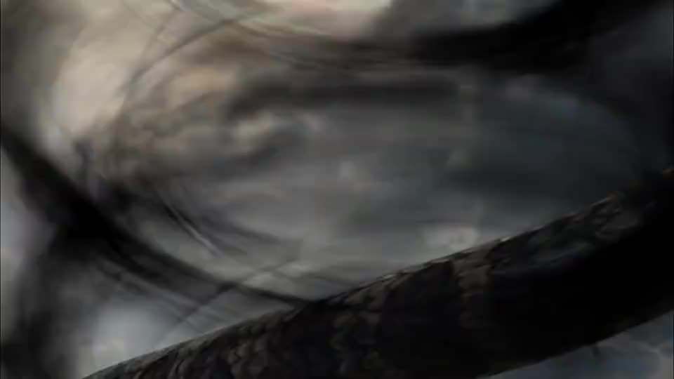 鹰是蛇的天敌黑袍护法袭击玉帝法身护道大鹏一现身他怂了
