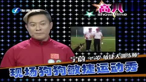 """中国训犬""""总教头"""",现场秀狗狗的敏捷度,没想到这条狗超会演!"""
