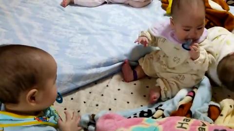 超萌的四胞胎日常玩耍 老四的奶嘴被老三偷了还浑然不知!