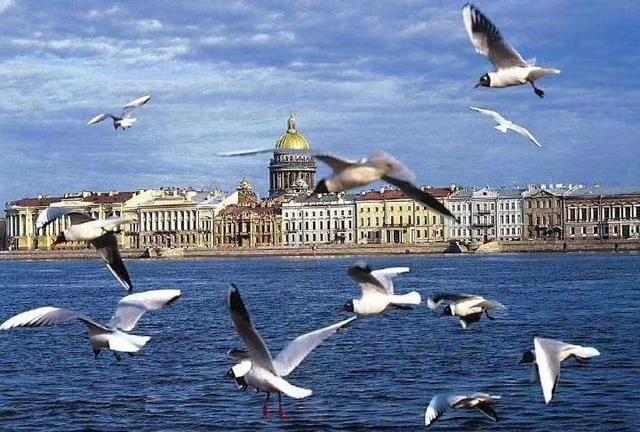 诗人普希金的著名诗篇 我站在涅瓦河上 就是这个城市 圣彼得堡