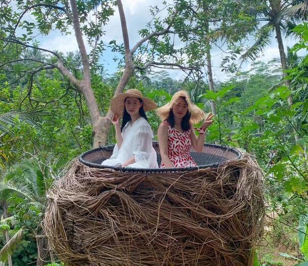 巴厘岛秋千,为何游客都爱打卡,来现场才发现,一个秋千这么贵!