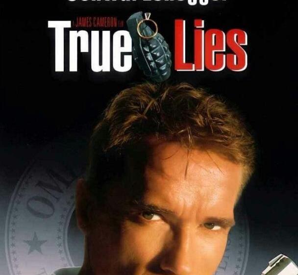 好莱坞经典电影《真实的谎言》影评?