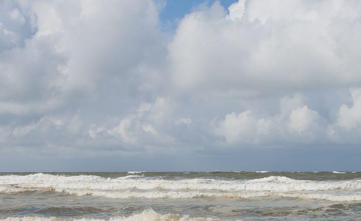 厚重的云彩在天空排列着,白天鹅在水里游着,如同一幅画一般