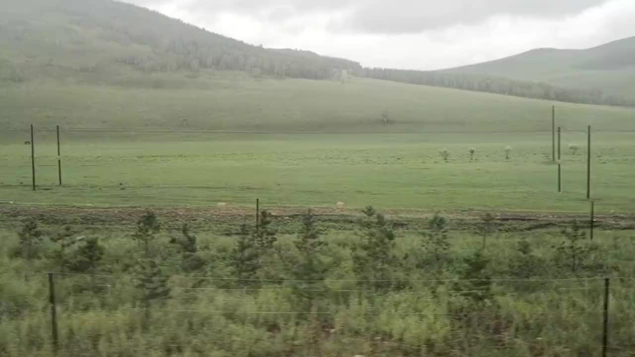 在呼伦贝尔大草原住蒙古包
