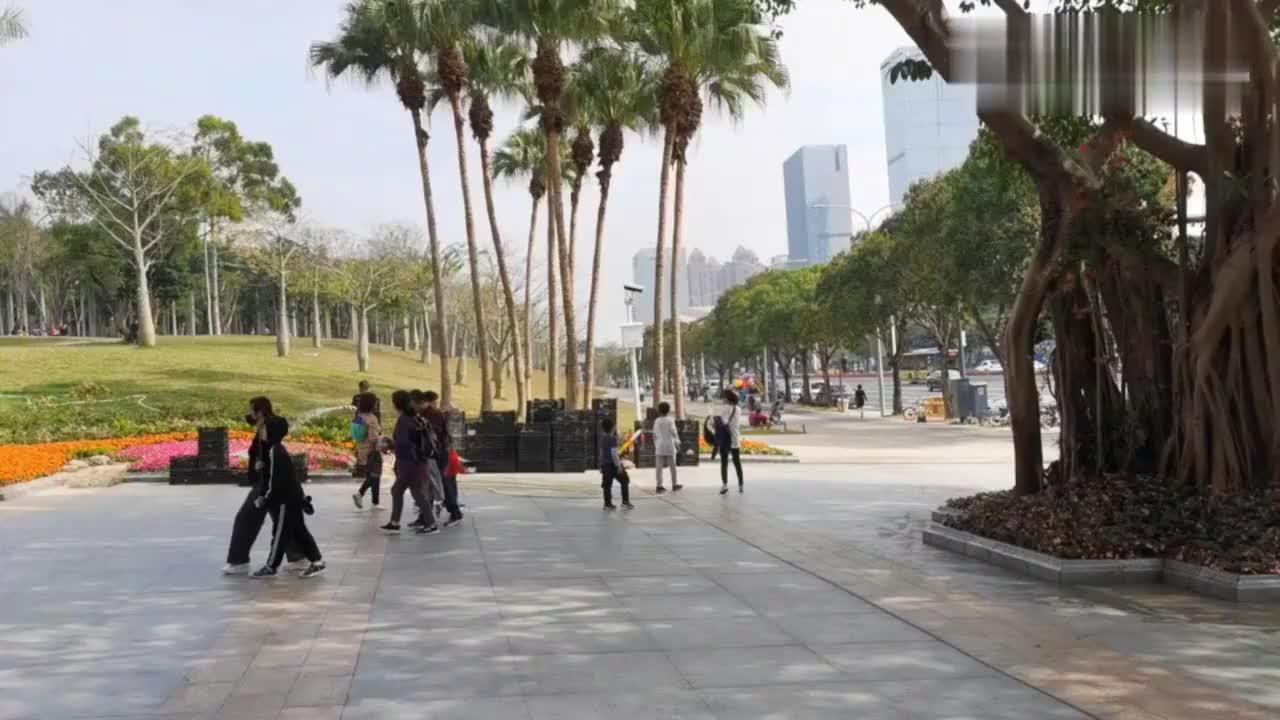 深圳莲花山公园站在山顶可以俯瞰深圳的城市建设太震撼了