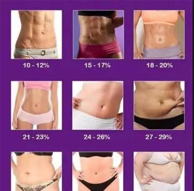 率 女性 体 脂肪