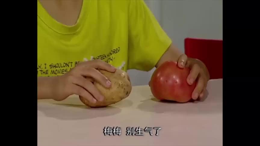 刘星在家把土豆西红柿比作父母姐姐弟弟都被他逗乐了