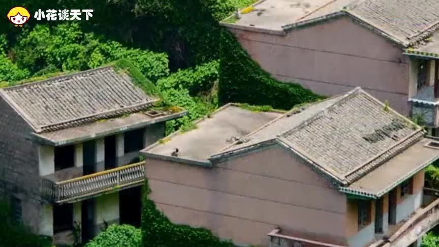 浙江版的童话世界到处是豪宅却无人居住这是为何