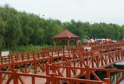 淮阳东湖不同美景,你看过吗?你有去过吗?