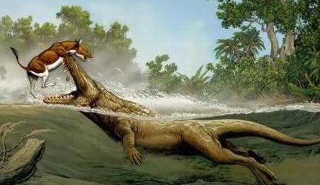 """盘点5大原始生物,第3种已从遗骸提取出基因,有望被重新""""复活"""""""