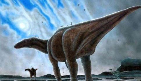 """盘点5大已灭绝的原始物种,第3种有望通过克隆重新""""复活"""""""