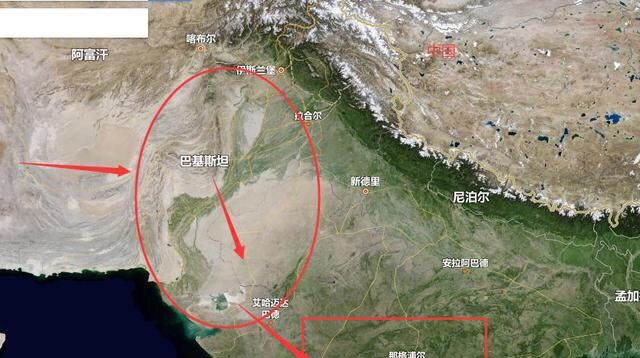 外国蝗虫肆虐,当地人民却无可奈何,中国网友则备好了油盼它来