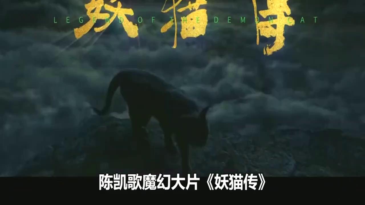 《妖猫传》黄轩带你走进隐藏在大唐盛世下的奇幻世界,值得去一看