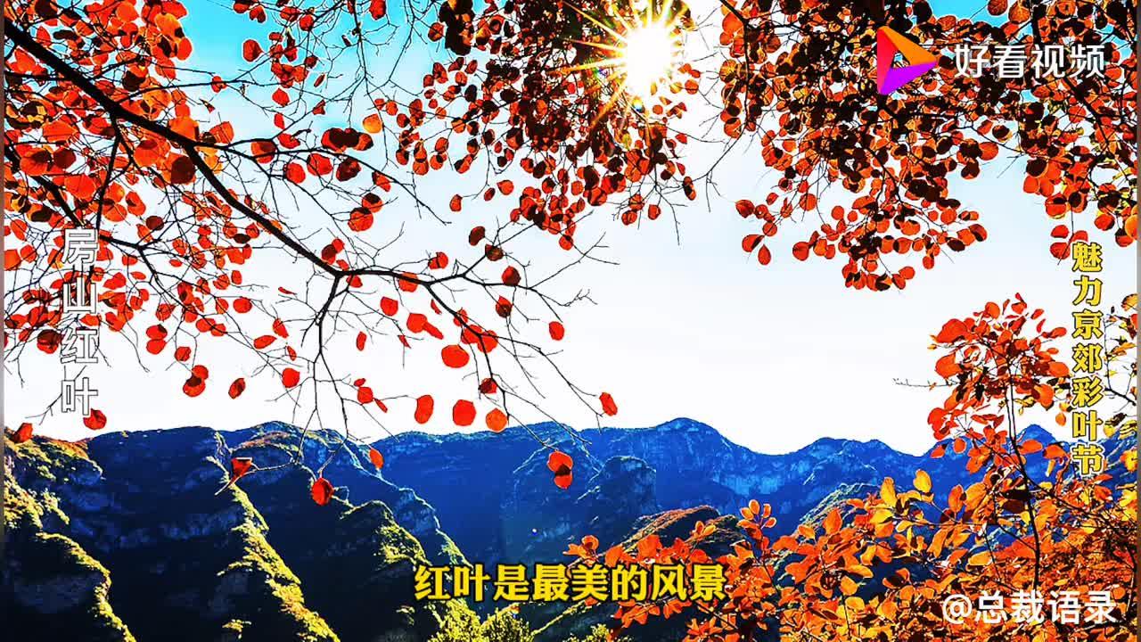 除了香山北京哪里的红叶还可以更漂亮