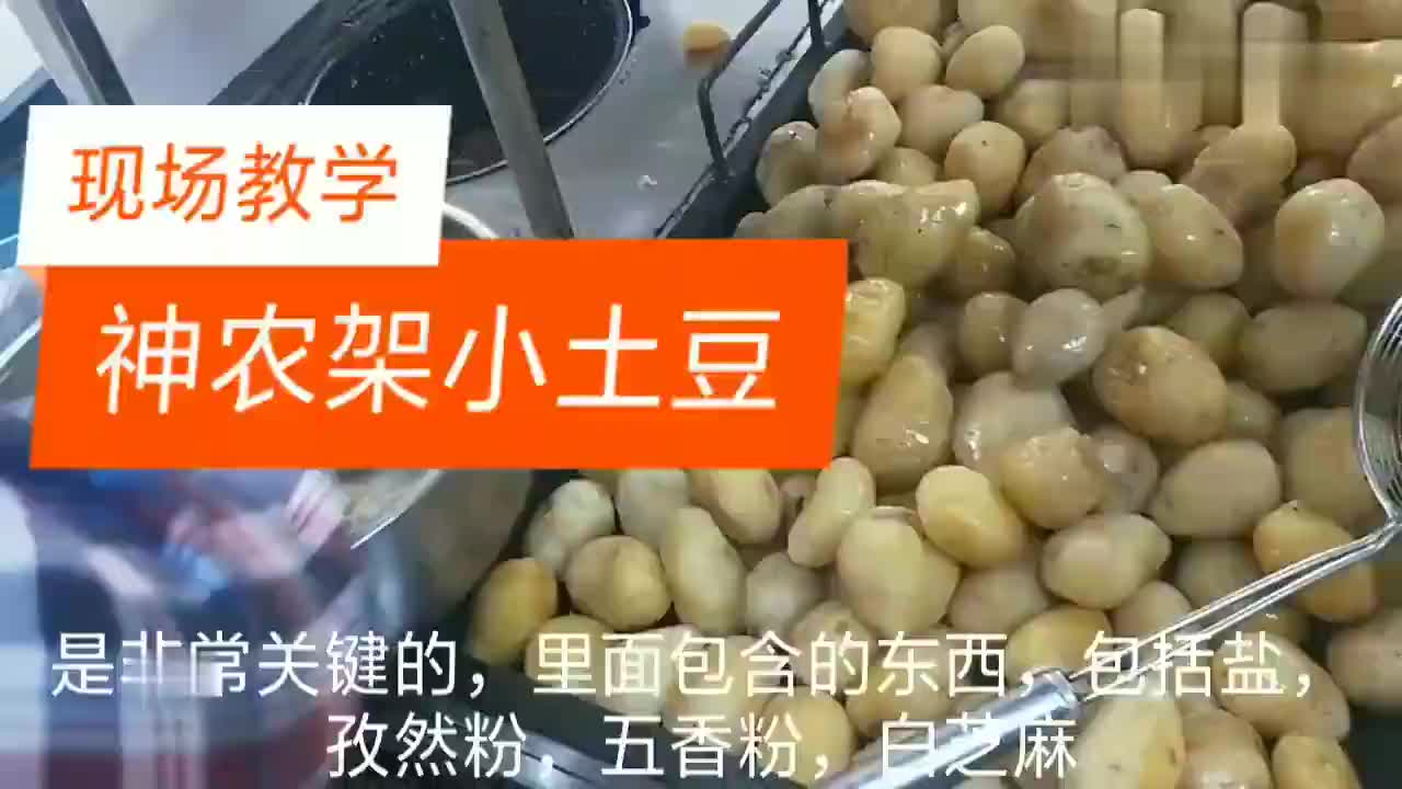 十年经验分享神农架小土豆现场教学商业版
