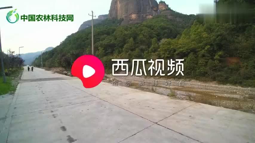 丹霞峻秀壁立千仞航拍铜川照金薛家寨