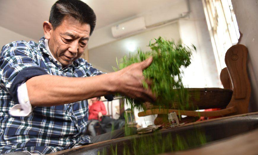 听音辨温度!51岁手工制茶师35年练就绝活,学徒时双手烫出水泡
