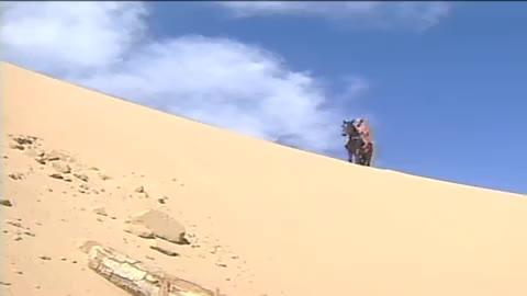 红娘缺水过度晕倒沙漠幸亏帅哥及时出现来了一出英雄救美