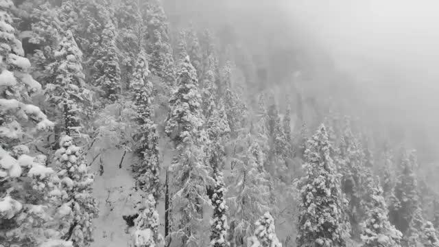 圣洁冰川多彩黑水达古冰川气势磅磗红军长征最后翻越的雪山