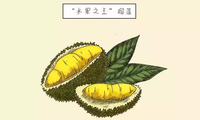 入秋后几种水果很常见,但却容易伤脾肺,还咳嗽,孩子哭闹也别买