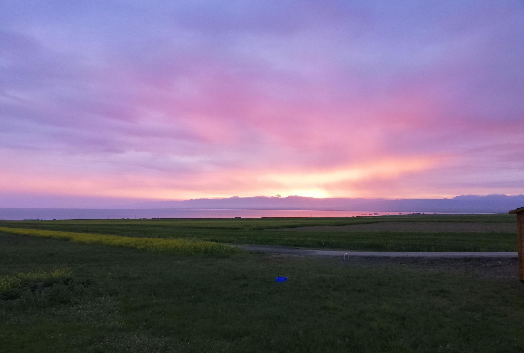 若尔盖草原,青海湖一路美景一路欣赏