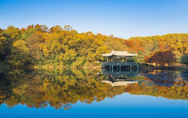 南京钟山风景区,风景优美,让人心旷神怡